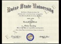 Boise State University Online Training, This is an example certificate issued by Boise State University for graduation in Online training